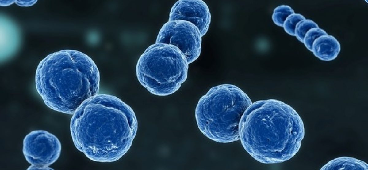 meningite-50899_0-1728x800_c-1200x556.jpg