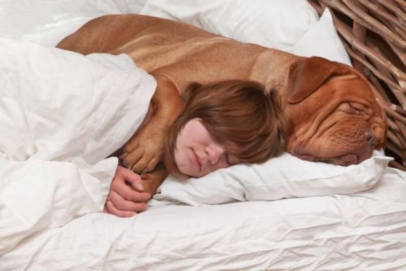 dormire-con-il-cane-666264.jpg