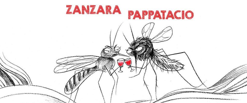 zanzara-e-pappatacio.jpg